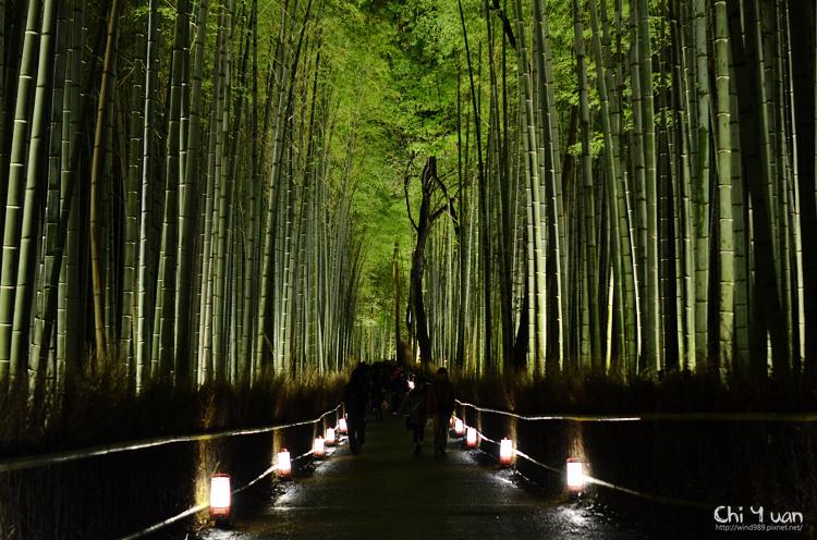 嵐山花燈路-竹林之道01.jpg