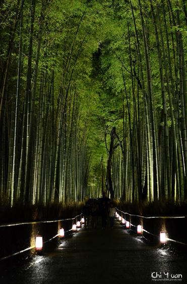 嵐山花燈路-竹林之道02.jpg