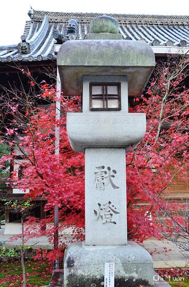 清涼寺09_nEO_IMG.jpg