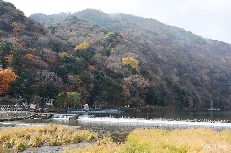 渡月橋13.jpg