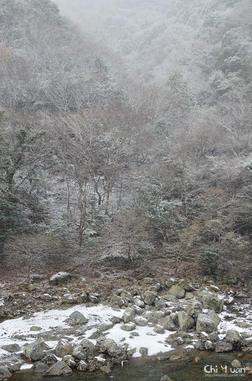 嵯峨野觀光鐵道-冬雪27.jpg