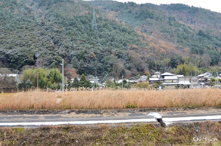 鵜之川遊步道05.jpg