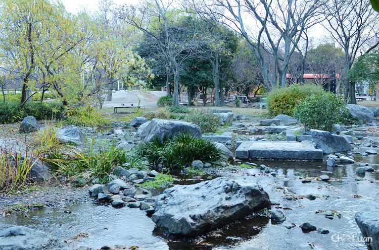 梅小路公園13.jpg