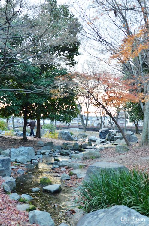 梅小路公園14.jpg