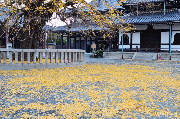 西本願寺08.jpg