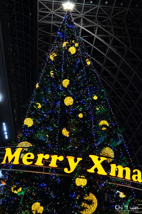 京都車站聖誕樹09.jpg