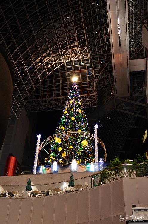 京都車站聖誕樹12.jpg