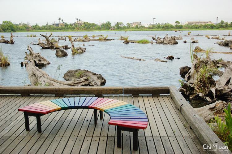 羅東林業文化園區-貯木池24.jpg