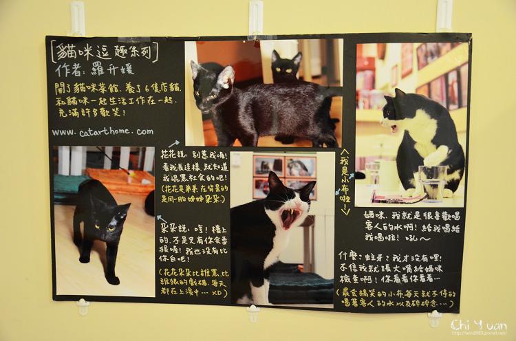 貓藝家24.jpg