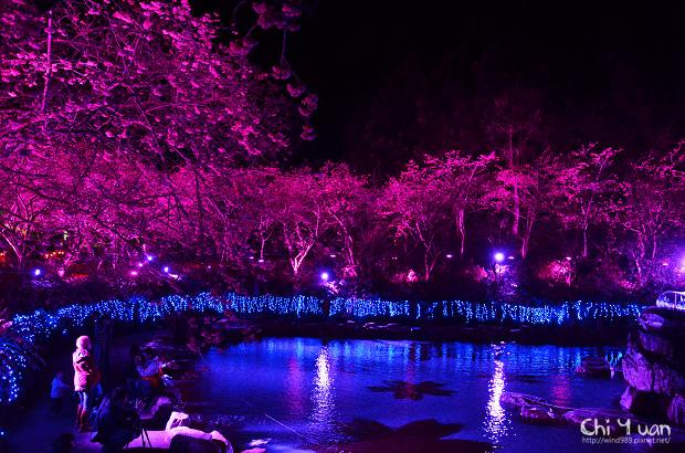 九族文化村櫻花祭05.jpg