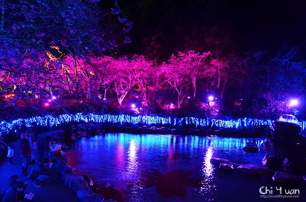 九族文化村櫻花祭07.jpg