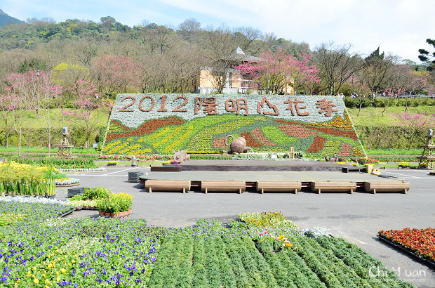 2012陽明山花季01.jpg