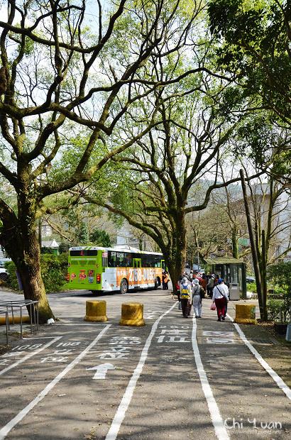 2012陽明山花季28.jpg
