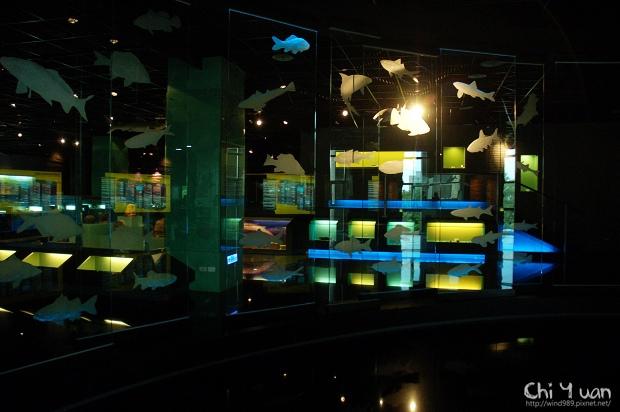 嘉義市立博物館10.jpg