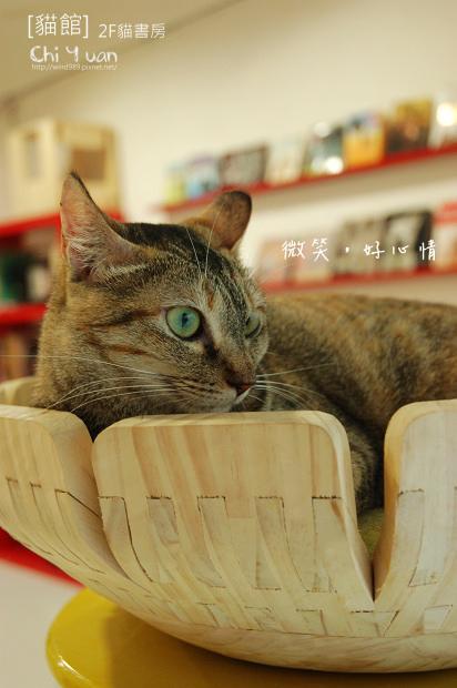 貓書房微笑01.jpg
