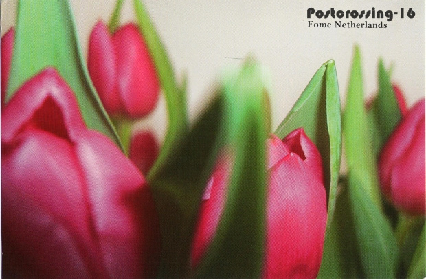 Postcrossing-15.jpg