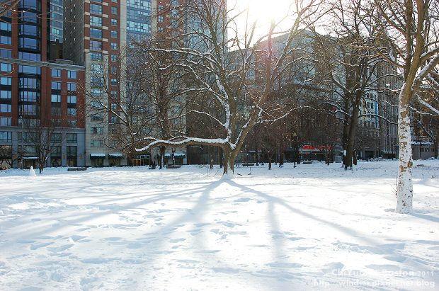 Boston Common波士頓公園05.JPG