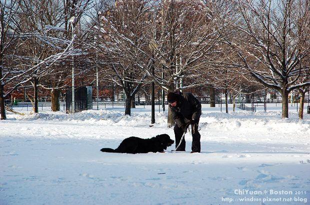 Boston Common波士頓公園20.JPG