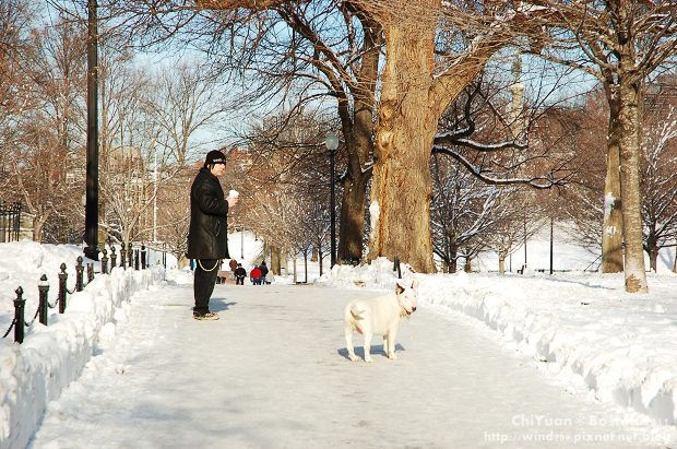 Boston Common波士頓公園19.JPG