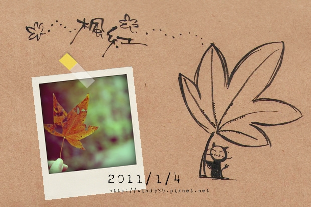 20110104楓葉紅01.jpg