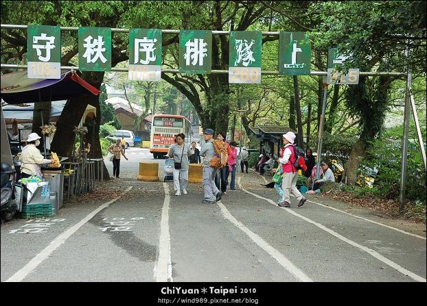 2010陽明山花季02.jpg