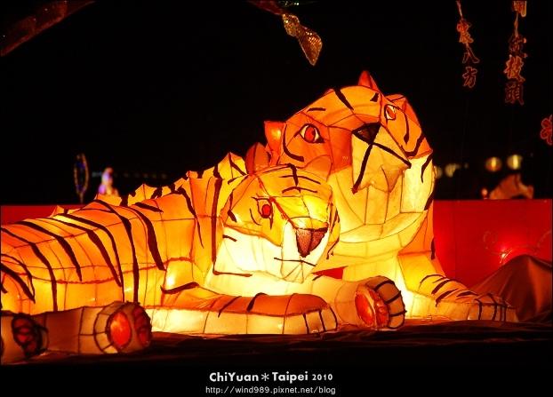 2010臺北燈節(虎)03.jpg