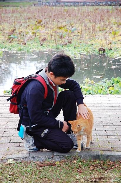20100126貓腳印(台北植物園)03.jpg