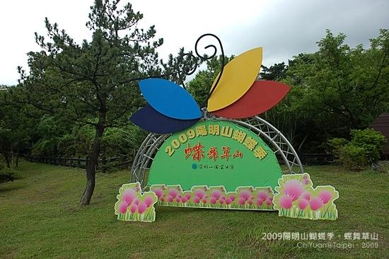 2009陽明山蝴蝶季01.JPG