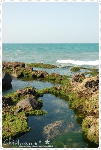 DSC_8718藻礁