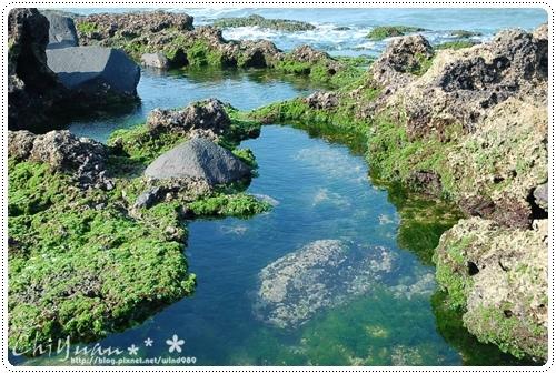 DSC_8720藻礁