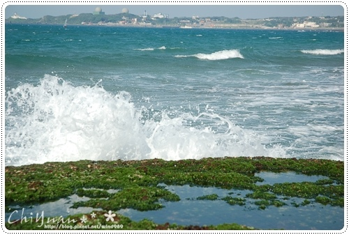 DSC_8721藻礁