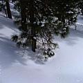 B-雪3.jpg