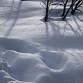 B-雪7.jpg