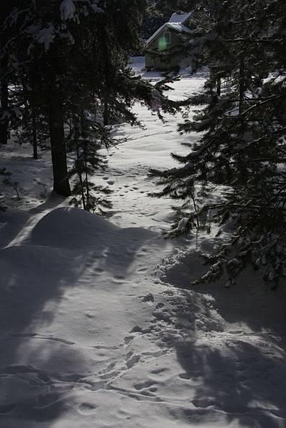 B-雪10.jpg