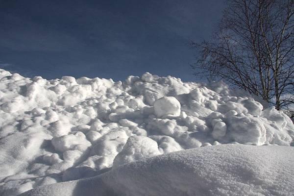 B-雪15.jpg