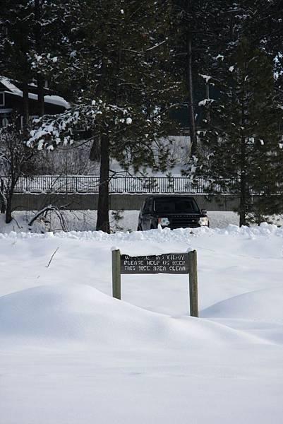 B-雪22.jpg