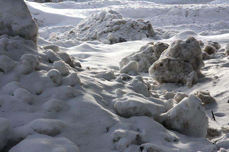B-雪地2.jpg