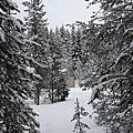 B-雪地11.jpg
