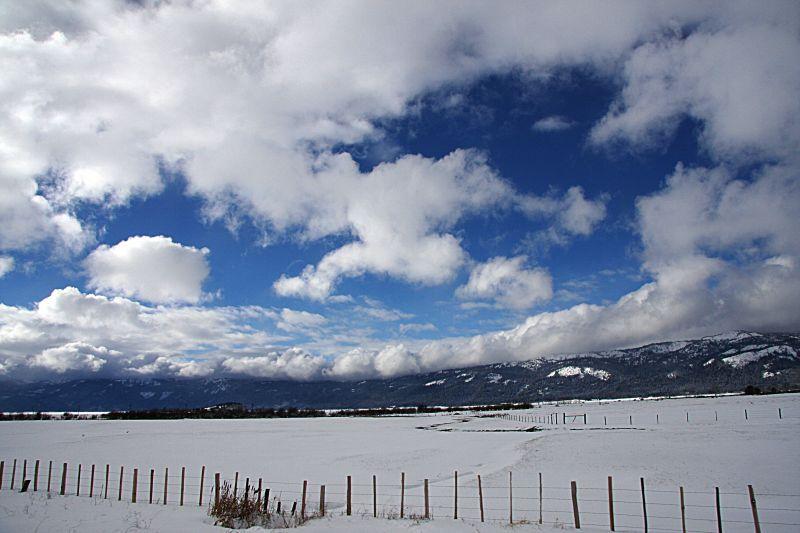B-雪地14.jpg