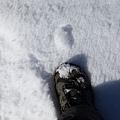 B-雪地16.jpg