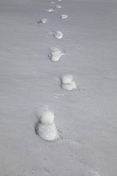 B-雪痕6.jpg