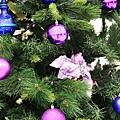 B-聖誕節1.jpg