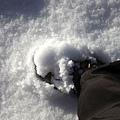 B-雪印1.jpg