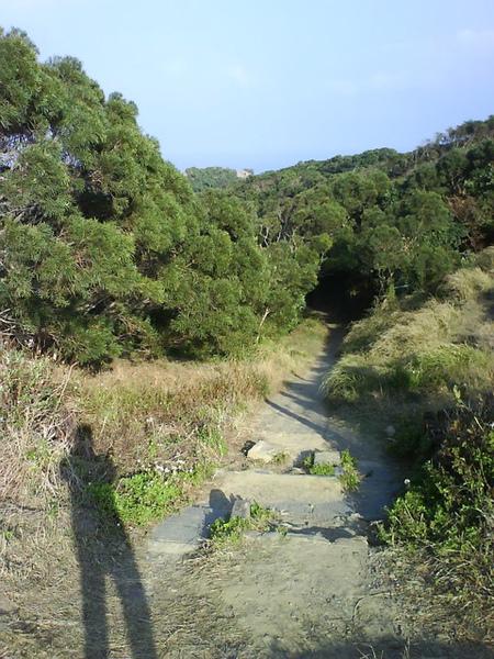 社頂自然公園的一個出口…我們從這進人比較少