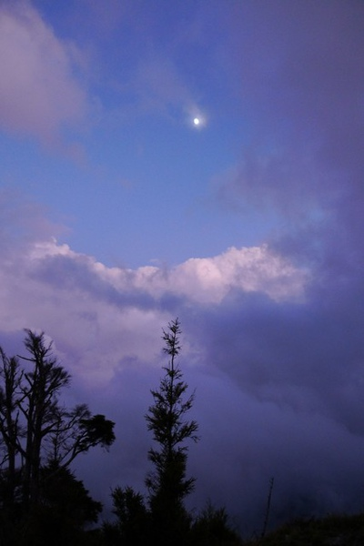 山上的夜色也讓人為之驚豔!