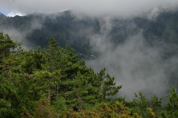 天池山莊在雲霧飄渺中現身