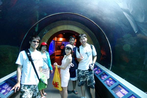 小海底隧道