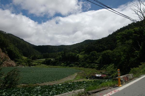 台七甲回程的風景也很棒