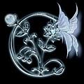 m_1606EFEAC9F1184D760266B099E98556.jpg
