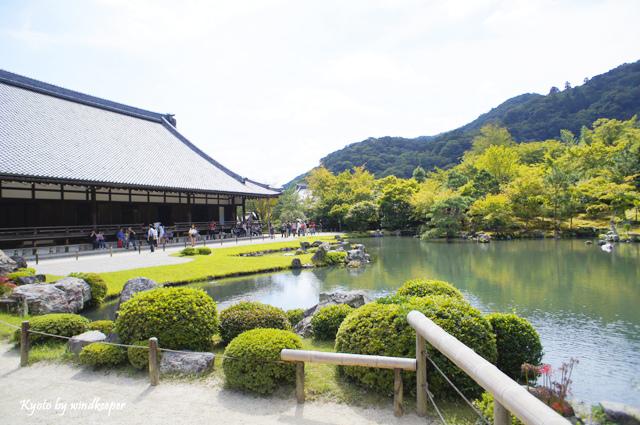 【京都】彼岸花畔一片天:大本山天龍寺(1)